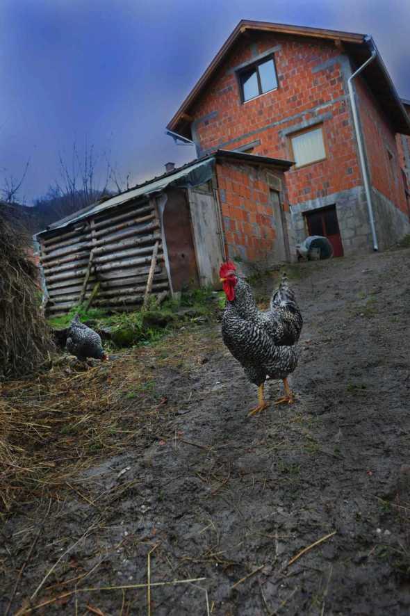 Bosnia37bianca pasquini