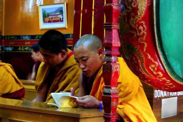 Tibetani16bianca pasquini