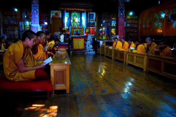 Tibetani17bianca pasquini