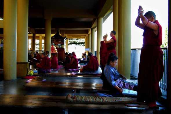 Tibetani23bianca pasquini