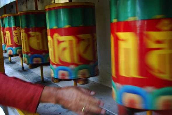 Tibetani37bianca pasquini