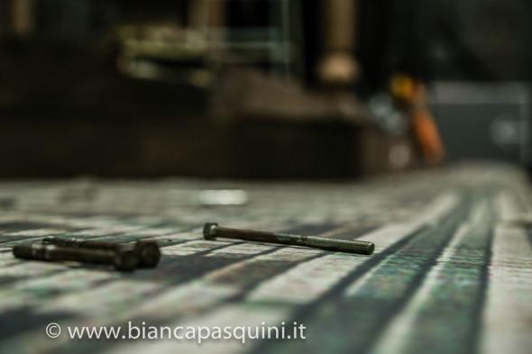 bianca pasquini-34