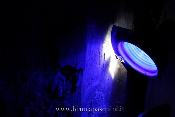 bianca pasquini_-73