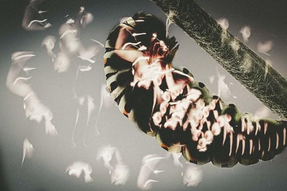bianca pasquini photography_-2