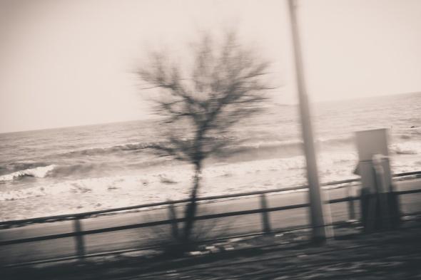 irislab photobianca pasquini photo-3
